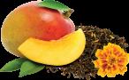 Mango Amazon 1