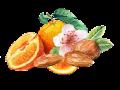 OrangeAlmond 1