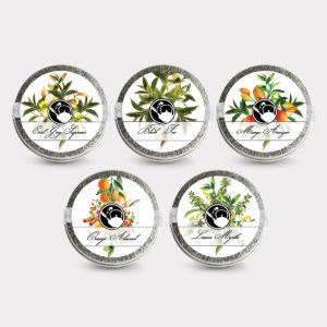 Healthy Customizable 5 Black Tea Mini Tin Variety Pack