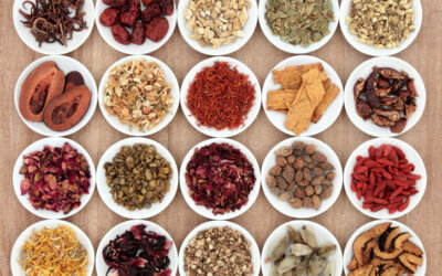 How Drinking Tea and Herbal Blends can help your Body, Mind and Soul